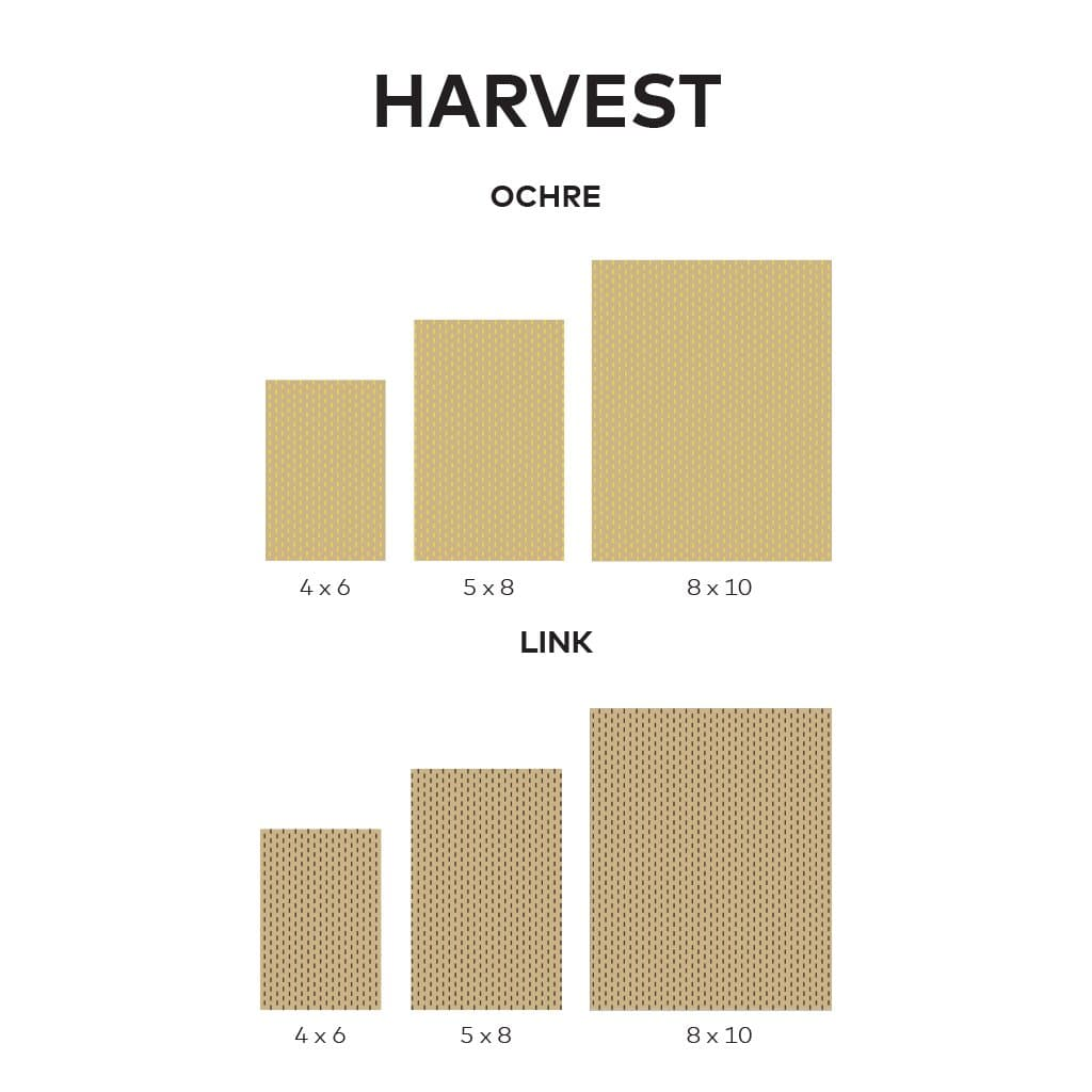 Harvest Rug Line Drawing 1024x1024