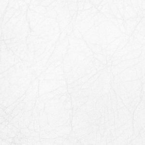 alpine white leather